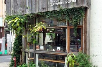 Tendance retail au Japon : le naturel, le végétal et le bois